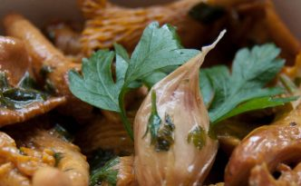 Girolles trifolate
